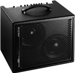 AER Amp Three Acoustic Combo Angle