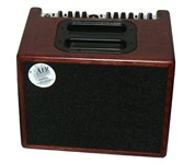 AER Compact 60 III 1x8 Acoustic Combo, Stained Oak