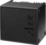 AER Domino 2A 100W 2x8 Acoustic Combo, Ex-Display