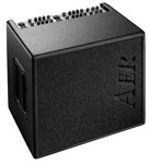 AER Domino 3 2x100W 2x8 Acoustic Combo