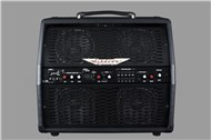 Ashdown ?AA-100 Acoustic Amplifier Combo