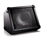 Ashton BSK158 15 Watt Busker Amplifier