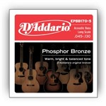 D'Addario EPBB170-5 Phosphor Bronze 5-String Acoustic Bass (45-130)