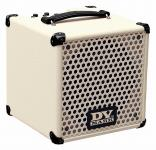 DV Mark Little Jazz Bass Combo