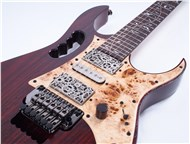IbanezJEM77WDPSteveVaiSigCBrown-FrontHalf4