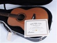 Ovation FD14AV50-4 - Case
