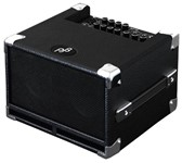 Phil Jones Bass Cub BG-100 (Black)