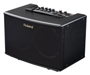 Roland AC-40 Acoustic Chorus 40W Stereo Combo