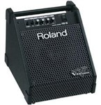 Roland PM-10 Monitor System