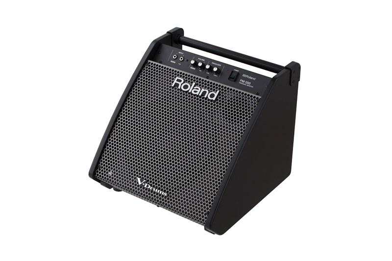 Roland PM-200 Monitor System,angle