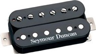 Seymour Duncan AHB 10n Blackouts Coil Pack (Neck, Black)