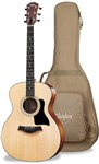 Taylor 114 Acoustic with Case