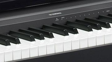 yamaha p45 digital piano yamaha p 45 gak. Black Bedroom Furniture Sets. Home Design Ideas